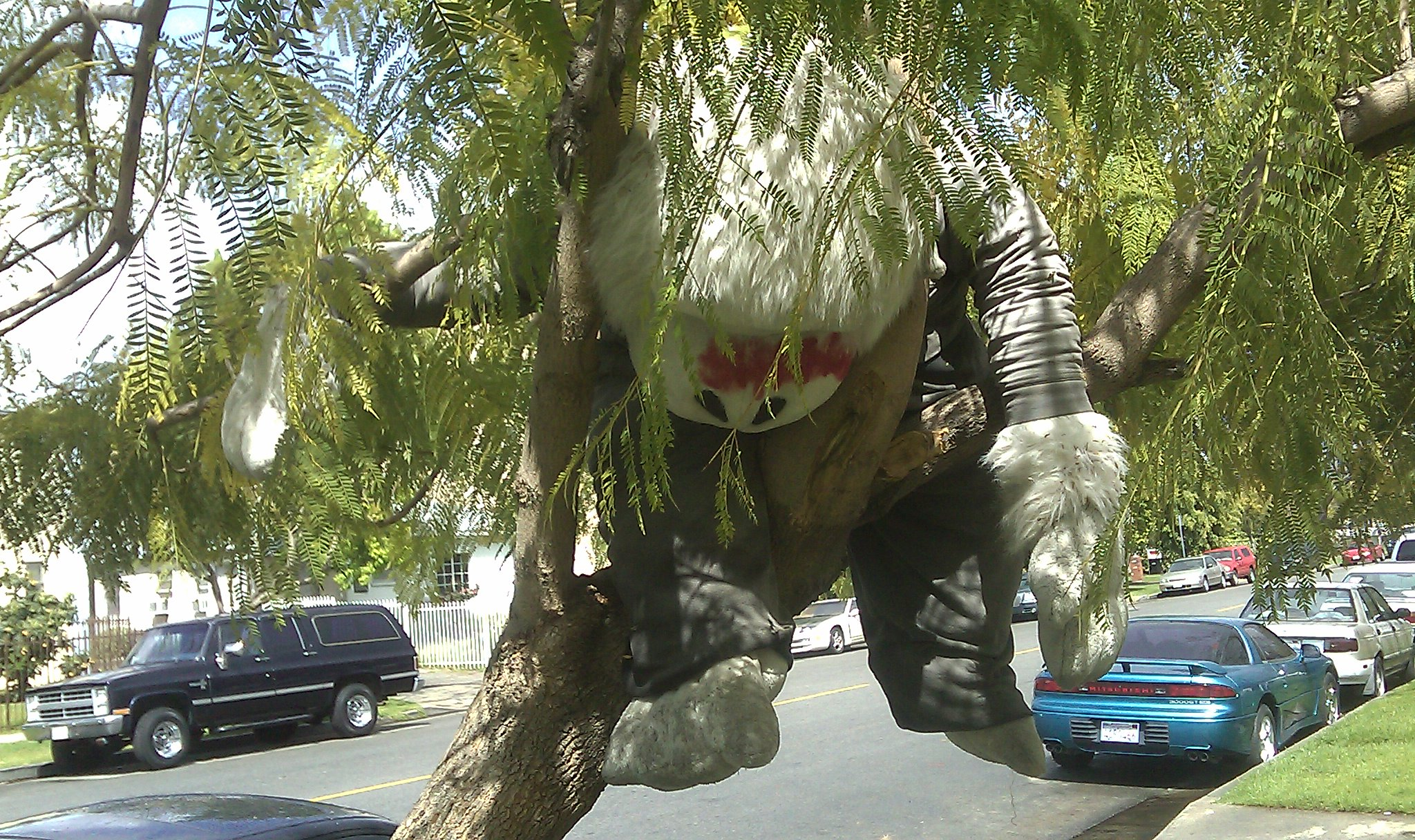 big stuffed monkey in a tree