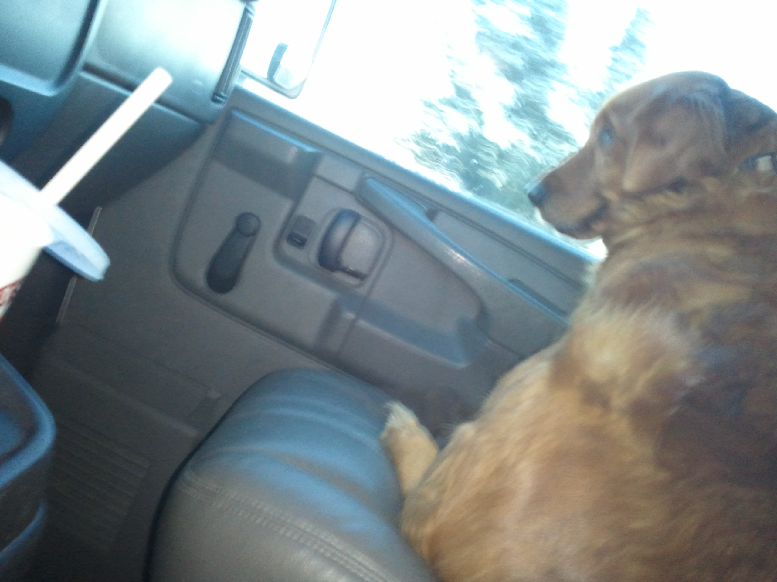 Ruby in the moving van
